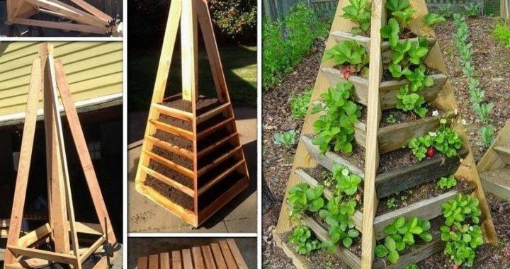 Cómo hacer una jardinera en forma piramidal para ahorrar espacio