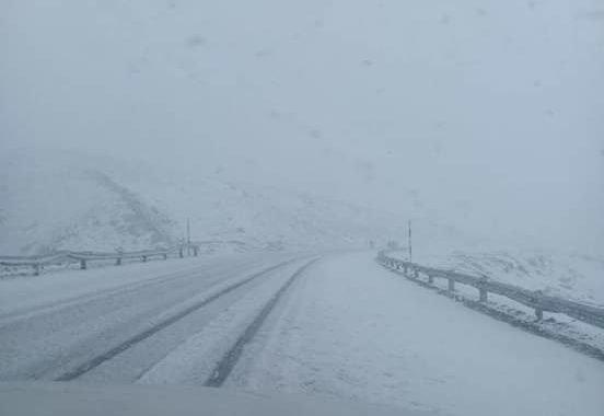 Cerraron el Paso Pino Hachado por nevadas intensas