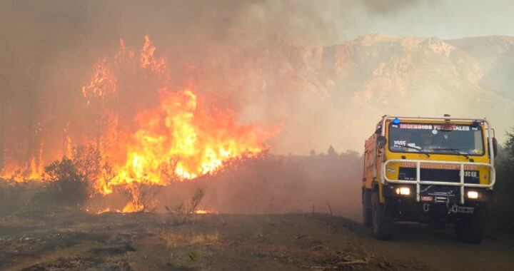 Neuquén colabora en el combate de los incendios en la cordillera